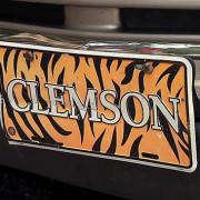 _ClemsonStudent